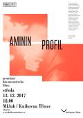 Aminin profil K3